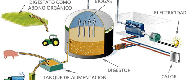 Infografia del funcionamiento de una planta de Biogás